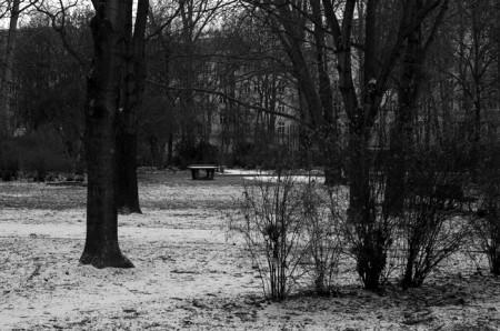 Auerpark2