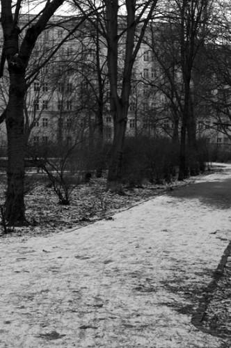 Auerpark3