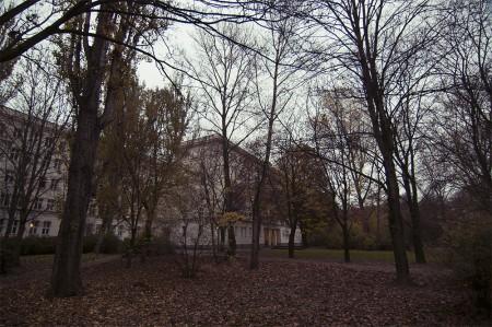 Herbst-Auerpark1