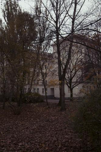 Herbst-Auerpark3