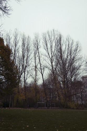 Herbst-Auerpark8